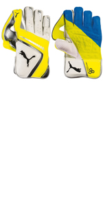 Wicket Keeper Gloves - Puma EvoSpeed 2016 2 Senior