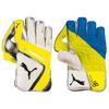Puma EvoSpeed2 keeper gloves